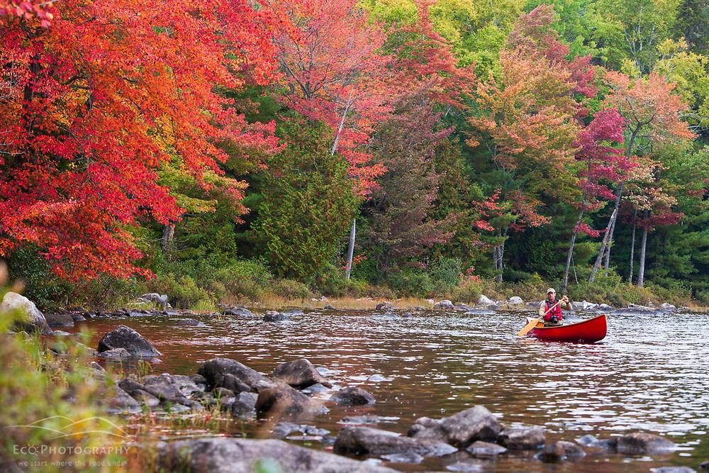 A man paddles his canoe on Seboeis Lake near Millinocket, Maine.  Fall.