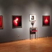 """Untouchable"" installation at ArtSpace, Shreveport Museum of Art in Shreveport, Louisiana. April 2012."
