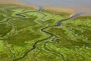 Luchtfoto van waddenkwelder op Ameland.