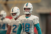 NFL-Miami Dolphins Training Camp-Aug 2, 2019