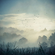 Morning fog covering the rural surroundings of Wuppertal, Germany - texturized photograph