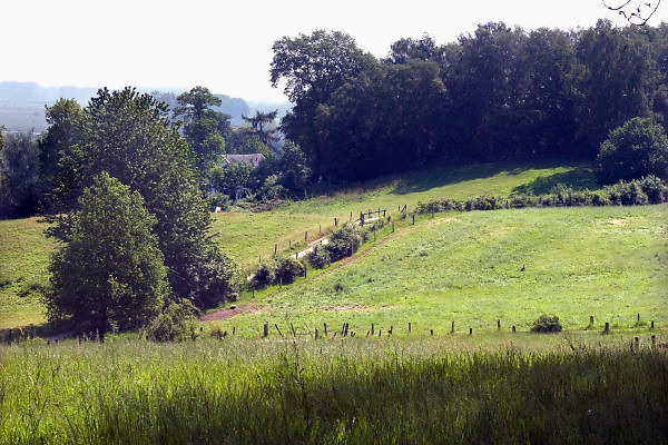 Nederland, Ubbergen, 23-5-2012Het was vandaag een dag met mooi en warm weer. Heerlijkheid Beek. Geldersch landschap. Foto: Flip Franssen/Hollandse Hoogte