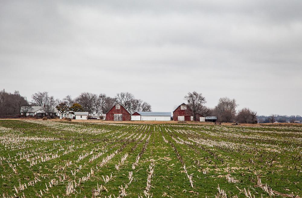A winter field just south of Wichita.