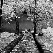Friendship is a special thing.  Here two friends are spending time chatting on stone steps in the fall near a stream in southern Oregon.