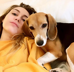 """Miley Cyrus releases a photo on Twitter with the following caption: """"""""Lazyyyy Dazzzze w Little Dog 💛💛💛"""""""". Photo Credit: Twitter *** No USA Distribution *** For Editorial Use Only *** Not to be Published in Books or Photo Books ***  Please note: Fees charged by the agency are for the agency's services only, and do not, nor are they intended to, convey to the user any ownership of Copyright or License in the material. The agency does not claim any ownership including but not limited to Copyright or License in the attached material. By publishing this material you expressly agree to indemnify and to hold the agency and its directors, shareholders and employees harmless from any loss, claims, damages, demands, expenses (including legal fees), or any causes of action or allegation against the agency arising out of or connected in any way with publication of the material."""
