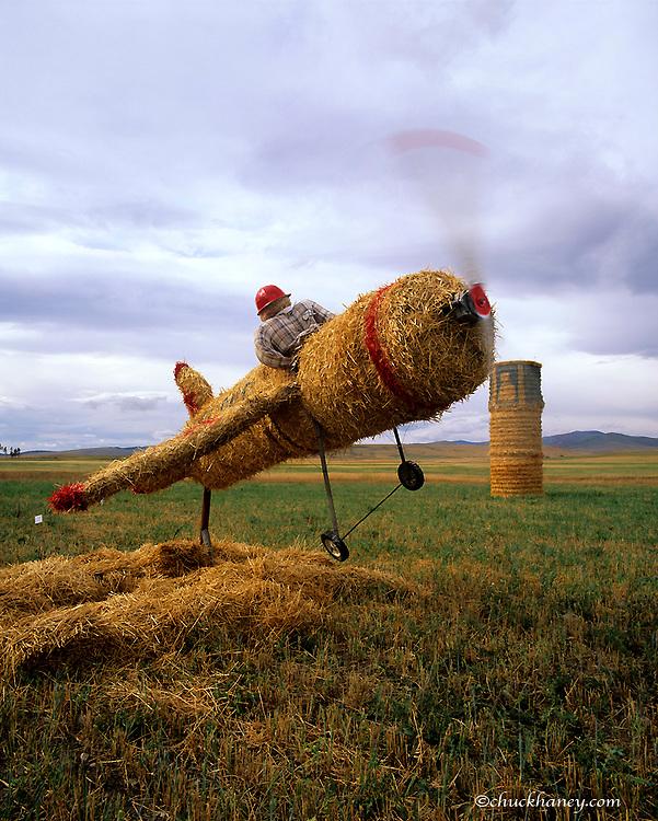 What the Hay Festival near Utica, Montana, USA