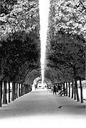 Palais Royale, Paris, France