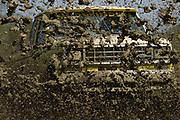 Ford Tough Ranger Mud Bogging