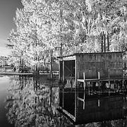 Boat Dock - Caddo Lake, Texas - Infrared Black & White