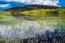 Loch Tarff, Inverness-shire, Scotland<br /> <br /> (c) Andrew Wilson | Edinburgh Elite media
