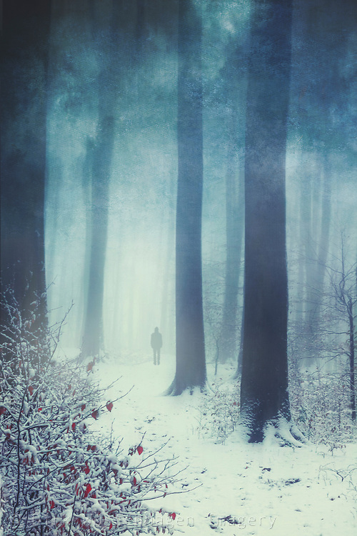 Man walking into a Misty winter forest<br /> Redbubble prints & more--> https://rdbl.co/2S6KEc6