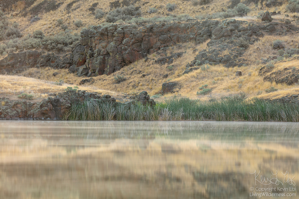 A basalt wall is partially reflected onto the water of McMannaman Lake in the Columbia National Wildlife Refuge in Washington state.