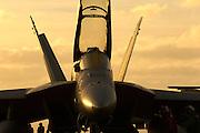 F/A-18F Super Hornet VF 102