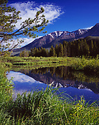 The Boulder Mountains reflected in beaver pond near the Big Wood River, Sawtooth National Recreatoin Area, Sawtooth National Forest, Idaho.