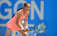 Magdalena Rybarikova (SVK) looks on during her match against Alison Riske (USA). The Aegon Open Nottingham 2017, international tennis tournament at the Nottingham tennis centre in Nottingham, Notts , day 4 on Thursday 15th June 2017.<br /> pic by Bradley Collyer, Andrew Orchard sports photography.
