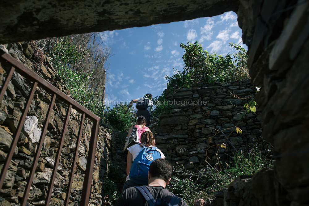 VERNAZZA, ITALY - 1 JUNE 2017: A high-school class climbs up the steep<br /> slope during a field trip with Margherita Ermirio, part of a UNESCO Youth program to enhance the relationship between the young and their territory, here in Vernazza, Italy, on June 1st 2017. This class has been studying terracing in the Cinque Terre from an historical point of view, comparing the 18th century maps with Google earth's most recent pictures. From the measures taken during the field trip, students will make a 3D design of the area.<br /> <br /> Given its jagged coastline and manifold mountainous chains, Italy is believed to hold a record in Europe with an estimated 300,000 hectares of terracing, and 170,000 kilometers of dry stone walls— 20 times the length of the Great Wall of China.<br /> Liguria, the narrow half-moon shaped region along the northern<br /> Thyrrenian sea, has the highest concentration, and terracing is in<br /> poor shape there. In Vernazza, almost half of the terracing is in<br /> ruins.<br /> <br /> Terraced vineyards, apple and lemon groves horizontally run around the green slopes of the Cinque Terre. The stone walls have allowed such vital cultivation in the area and prevented land slides. Since the 1960s, the ancient walls have been largely<br /> abandoned, posing hydro-geological threats to the same villages during<br /> heavy rains and, in general, as time passes.<br /> <br /> Since the 2012 flood - when tons of mud invaded the<br /> village's main road, shops and and homes, isolating the area and<br /> taking three lives - Margherita Ermirio has agreed with the various land lords to take<br /> over 6,000 square meters of land parcels that needed to be cleaned up,<br /> in order to fix them and thus prevent land slides, but also to show to<br /> the younger generations that agriculture is still possible in the<br /> Cinque Terre.