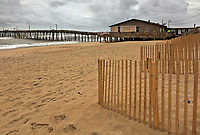 NC01269-00...NORTH CAROLINA - Sand fences along the sand dunes at the edge of the Atlantic Ocean at Nags Head Fishing Pier on the Outer Banks in the town of Nags Head.