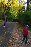 Walking on road, Autumn, Wyomissing Park, Berks Co., PA