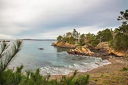 Whaler's Cove, Point Lobos, Carmel California