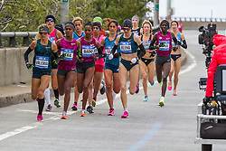 NYC Marathon, Valeria Straneo leads early