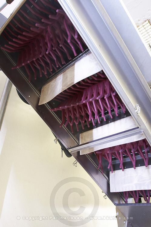 egreneur socma automatic grape sorting machine ch gd barrail lamarzelle figeac saint emilion bordeaux france