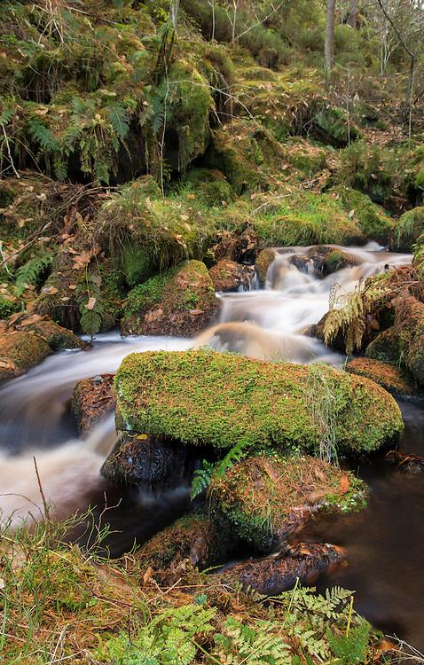 Wyming Brook in the Peak District.