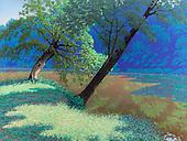 Landscape - Larger Work