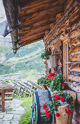 THEMENBILD - rote Geranien vor der Alm. Die bewirtschaftete Alm, wo rund 800 Schafe und 55 Milchkühe im Sommer sind, besteht seit dem Jahre 1779 und wird von der Familie Aberger Dick geführt. Sie liegt unmittelbar bei den Kapruner Hochgebirgsstauseen, aufgenommen am 09. August 2018, Kaprun, Österreich // red geraniums in front of the Alm. The farmed pasture, where about 800 sheep and 55 dairy cows are in summer, has existed since 1779 and is run by the Aberger Dick family. It is located directly at the Kapruner high mountain reservoirs on 2018/08/09, Kaprun, Austria. EXPA Pictures © 2018, PhotoCredit: EXPA/ Stefanie Oberhauser
