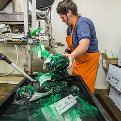 Bobbi-Jo Dame (owner Ralph Smith's daughter) bags mussels at Moosabec Mussels, Inc., in Jonesport, Maine.