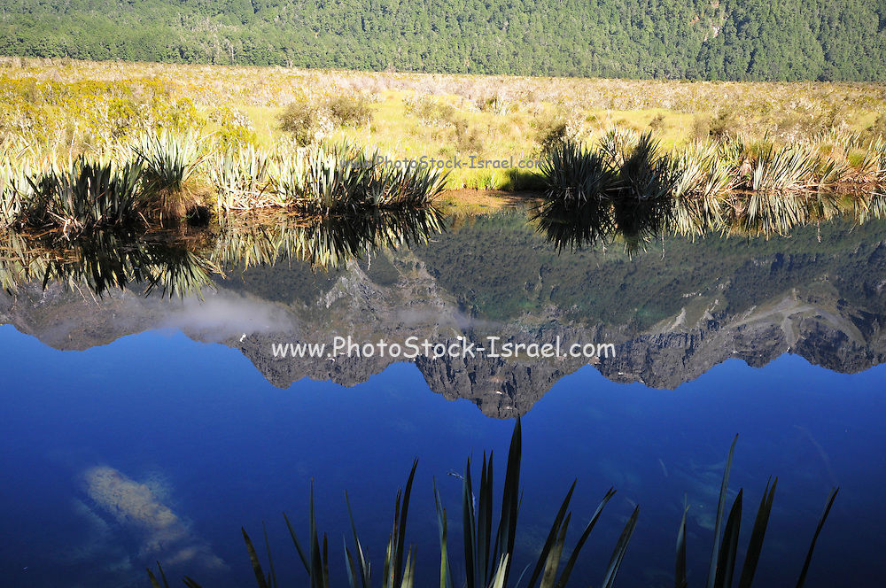 New Zealand, South Island, Milford Road, Fiorland National park Mountains reflect in calm water