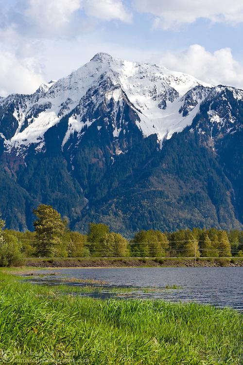 Mount Cheam from Seabird Island (Sq'éwqel)near Agassiz, British Columbia, Canada