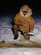 Inupiat ice-fisherman from the village of Nuiqsut picking Colville River Cisco from a net on the Colville River, -27F, early November, Arctic Coast of Alaska.