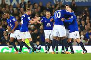 Leon Osman of Everton celebrates his winning goal - Everton vs. West Ham United - Barclay's Premier League - Goodison Park - Liverpool - 22/11/2014 Pic Philip Oldham/Sportimage