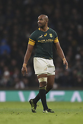 November 12, 2016 - London, England, United Kingdom - Lionel Maope of South Africa during Old Mutual Wealth Series between England  and South Africa played at Twickenham Stadium, London, November 12th  2016  (Credit Image: © Kieran Galvin/NurPhoto via ZUMA Press)