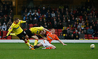 Photo: Richard Lane/Richard Lane Photography. Watford v Blackpool. Coca Cola Championship. 01/11/2008. Will Hoskins (L) scores Watfords opener