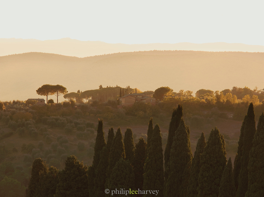The hilly landscape of Tuscany at sunset on the outskirts of Siena, Italy