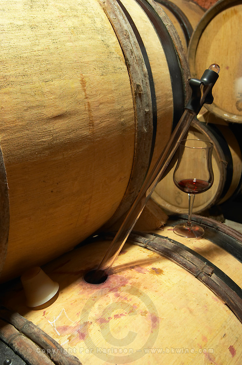 Domaine de Montcalmes in Puechabon. Terrasses de Larzac. Languedoc. Barrel cellar. Drawing a sample with a pipette. France. Europe.