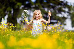 © Licensed to London News Pictures. 13/06/2021. Leeds UK. 6 year old Scarlet plays in the Buttercups at Primrose Valley park in Leeds this morning on what could be the hottest day of the year so far. Photo credit: Andrew McCaren/LNP