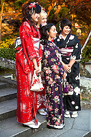 """Dressing up in Kimono - Kimono differ in style and color depending on the occasion on which it is worn and the age and marital status of the person wearing it. To put on a kimono needs some practice. Especially tying the belt alone is difficult so that many people require assistance. Wearing a kimono properly includes the proper hair style, shoes, socks, and even underwear.  Nowadays it is popular to """"dress up in kimono for a day"""" even for foreign visitors."""