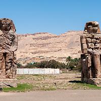 Egypt - Luxor - Colosi of Memnon