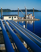 Fuel lines leading to Petro Marine Services' Fuel Dock, Craig, Prince of Wales Island, Southeast Alaska.