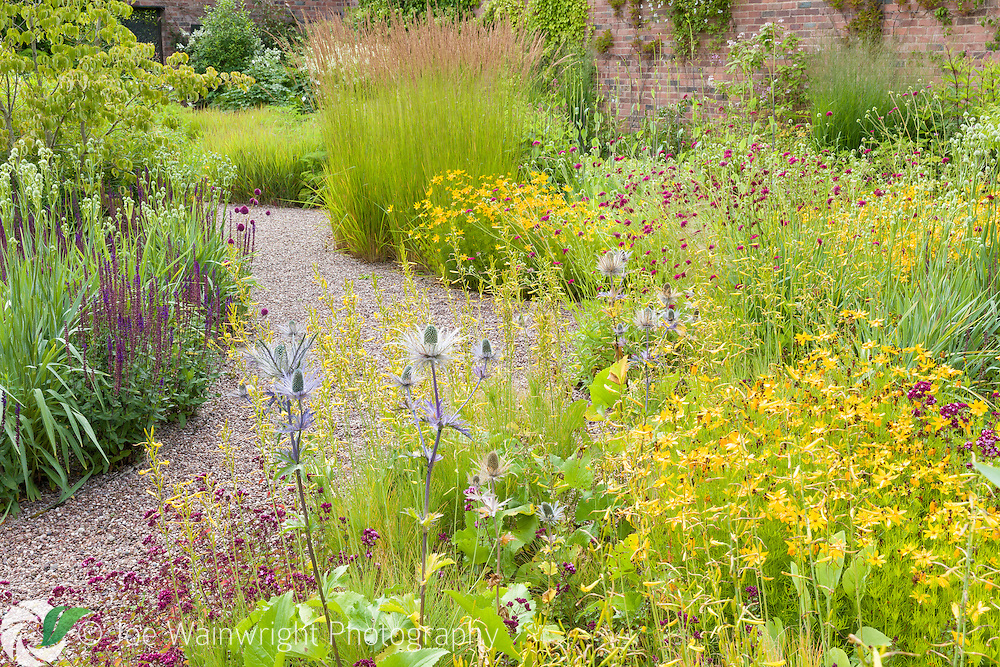 A path through the walled garden at Cogshall Grange, Cheshire, designed by Tom Stuart-Smith. Photographed in July