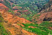Waimea Canyon from Pu'u Ka Pele Lookout, Island of Kauai, Hawaii