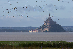 Mont Saint-Michel - Endurance - Alltech FEI World Equestrian Games™ 2014 - Normandy, France.<br /> © Hippo Foto Team - Leanjo De Koster<br /> 25/06/14