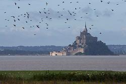 Mont Saint-Michel - Endurance - Alltech FEI World Equestrian Games™ 2014 - Normandy, France.<br /> © Hippo Foto Team - Leanjo De Koster<br /> 25/06/14