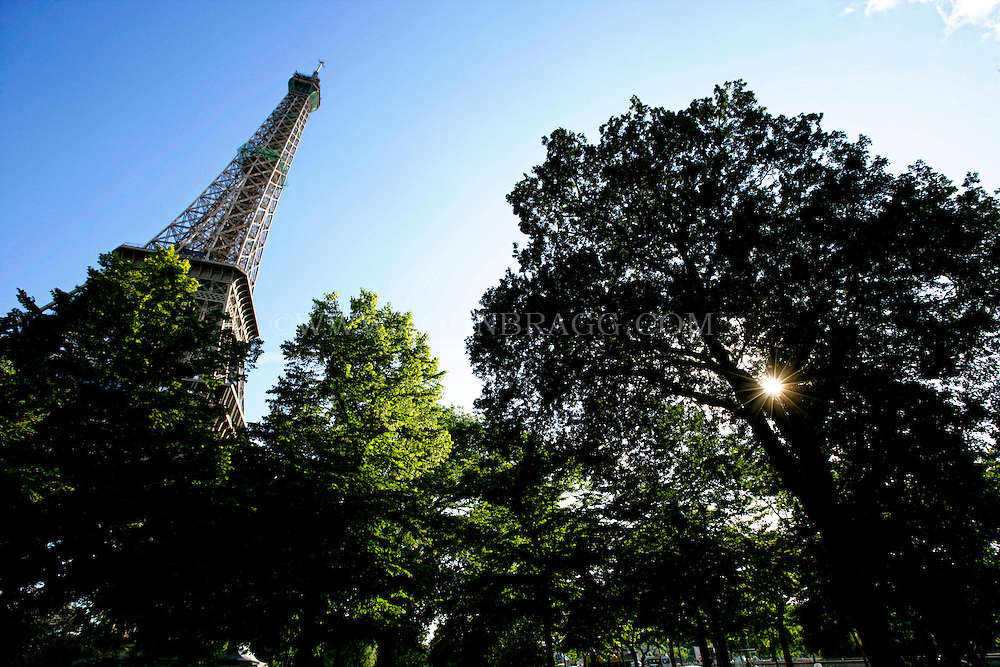 Vertical photo of the Eiffel Tower, looking up through the trees, Paris, France.