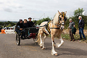 A group of men, one with a horse whip, drive a horse and wagon at Appleby Horse Fair, the biggest gathering of Gypsies and travellers in Europe, on 14th August, 2021 in Appleby, United Kingdom. Appleby Horse Fair attracts thousands from Gypsy, Romany, and traveller communities annually, making it the biggest gathering of its kind in Europe. Generally held for a week every June, the fair was postponed in 2020 and pushed forward to August in 2021 due to Coronavirus.