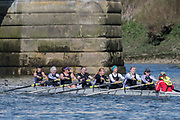 Mortlake/Chiswick, GREATER LONDON. United Kingdom. Maidstone Invicta Rowing Club<br /> W.MasC.8+, competing in the 2017 Vesta Veterans Head of the River Race, The Championship Course, Putney to Mortlake on the River Thames.<br /> <br /> <br /> Sunday  26/03/2017<br /> <br /> [Mandatory Credit; Peter SPURRIER/Intersport Images]