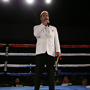during a Fire Fist Boxing Promotions boxing match at the A La Carte Pavilion on Saturday, August 12, 2017 in Tampa, Florida.  (Alex Menendez via AP)