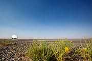 De Velox tijdens de ochtendruns op de tweede racedag. Het Human Power Team Delft en Amsterdam, dat bestaat uit studenten van de TU Delft en de VU Amsterdam, is in Amerika om tijdens de World Human Powered Speed Challenge in Nevada een poging te doen het wereldrecord snelfietsen voor vrouwen te verbreken met de VeloX 9, een gestroomlijnde ligfiets. Het record is met 121,81 km/h sinds 2010 in handen van de Francaise Barbara Buatois. De Canadees Todd Reichert is de snelste man met 144,17 km/h sinds 2016.<br /> <br /> With the VeloX 9, a special recumbent bike, the Human Power Team Delft and Amsterdam, consisting of students of the TU Delft and the VU Amsterdam, wants to set a new woman's world record cycling in September at the World Human Powered Speed Challenge in Nevada. The current speed record is 121,81 km/h, set in 2010 by Barbara Buatois. The fastest man is Todd Reichert with 144,17 km/h.